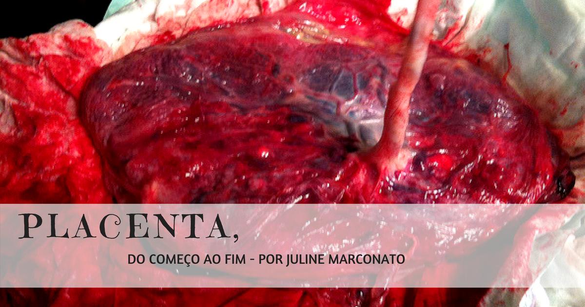 Placenta, Do Começo Ao Fim.