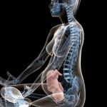 Exercícios pré parto que ajudam o encaixe do bebe na pelve materna.