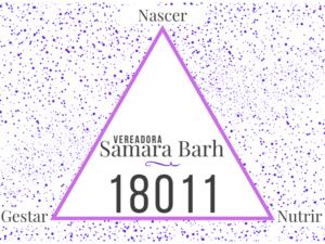 vereadora itapetininga Samara Barth